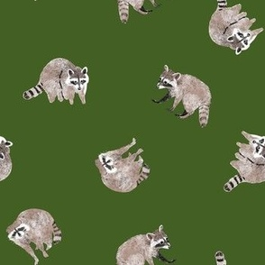 Small Watercolor Raccoons on Forest Green