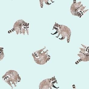 Small Watercolor Raccoons on Aqua Blue