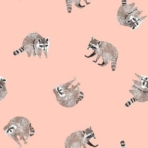 Small Watercolor Raccoons on Peach