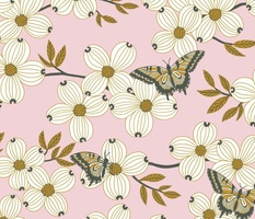 Dogwood blossoms and butterflies on light pink