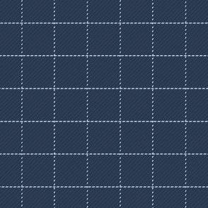 Navy and Sky Blue Windowpane Check