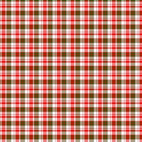 Groovy Bold Red and Green Christmas Plaid