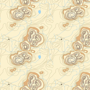 brown contour map compass rose