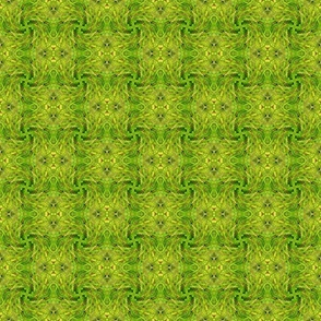 Lacy Leaves, Woven