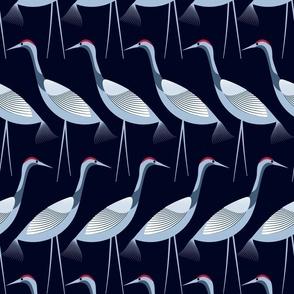 calm sandhill cranes large version