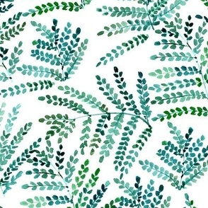 enchanting fern - watercolor small leaves - natural tropical plants - greenery foliage a550-1