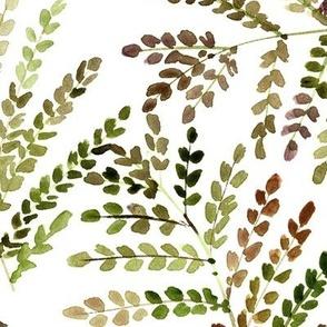 Khaki enchanting fern - watercolor small leaves - natural tropical plants - greenery foliage a550-6