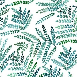 enchanting fern - watercolor small leaves - natural tropical plants - greenery foliage a550-7