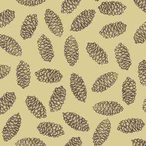 scattered spruce cones - brown on golden tan