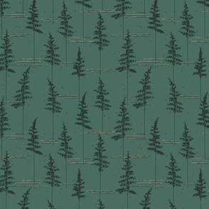 Fern_forest