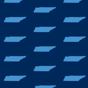 """Tennessee silhouette - 4x6"""" panels, light blue on football navy"""
