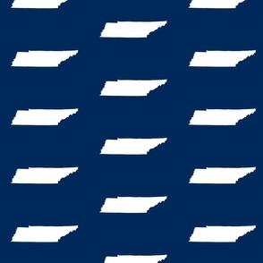 """Tennessee silhouette - 4x6"""" panels, white on football navy"""
