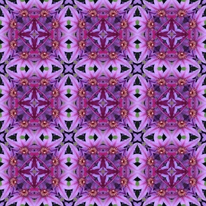 Clematis Tile 1