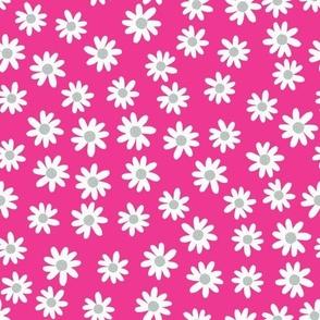 gray and hot pink daisies