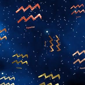 Ditsy Aquarius Zodiac Signs
