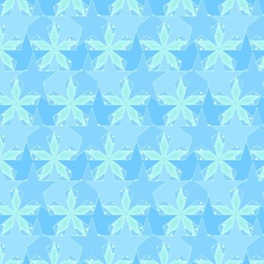 Star_Spots_-_Spring_on_the_Ocean