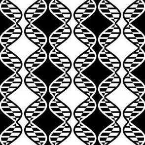 01216537 : DNA strands