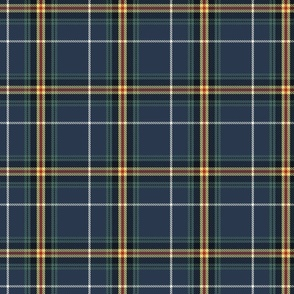 Navy and Buttercup Plaid Small
