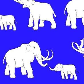 mammoths_blue