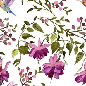 Fuchsia Flowers With Hummingbird