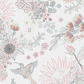 PROTEA sketch floral by Leanne Nowell