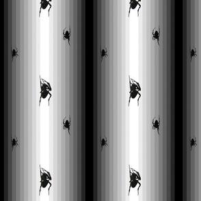Spiders Stripe