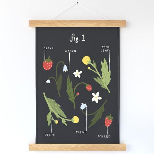 Garden Diagram 1