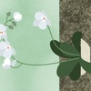 Orchids_-_the_only_houseplant_i_can_keep_alive!