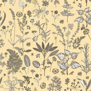 Herb Garden Amber Silhouette