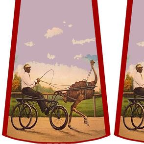 Cut-and-sew bouffant skirt, Ostrich cart