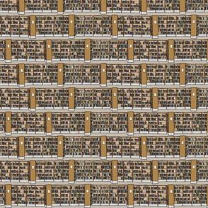 Steve's library tiny