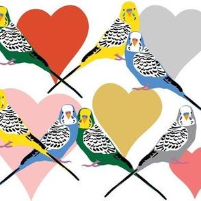I Heart Budgies - Multi