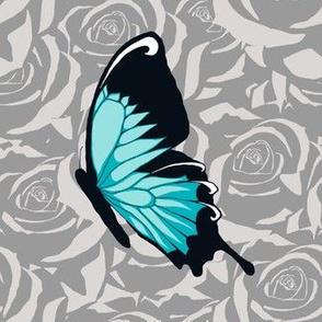 Blue Butterflies on Gray