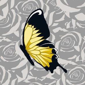 Yellow Butterflies on Gray