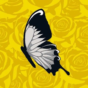 Gray Butterflies on Yellow