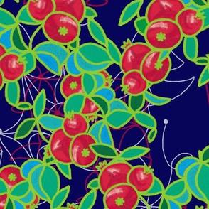 Pomegranates by Su_G_©SuSchaefer