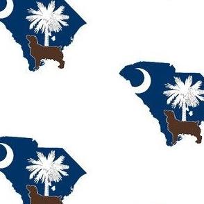South Carolina Boykin Spaniel