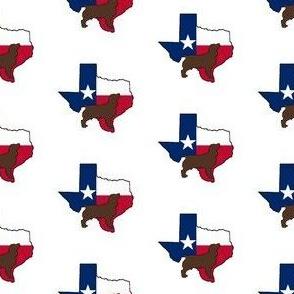 Texas Boykin Spaniel