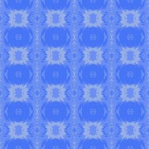_Siberian_Iris petal_sq crop 6_11_07_004-ch-ch-ch-ch-ch