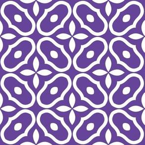 Mosaic - Grape