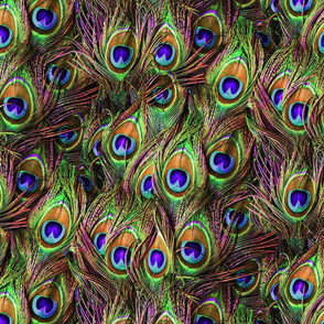 Peacock Feathers Invasion - Wave