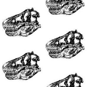 Bohemian Dinosaur | Vintage Museum Animals | T-Rex Skull | Black and White Dino