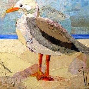 Seagull - DB