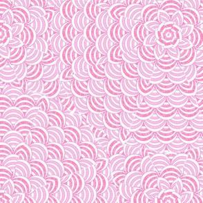 scallop pink white