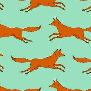 foxes running in mint