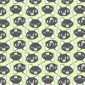 Catheads Black & Green