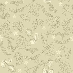Herbs seamless pattern