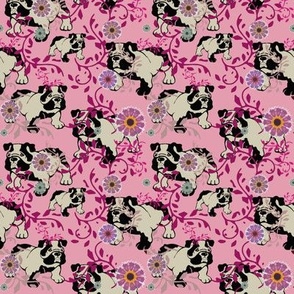bulldog in the flower garden - can u find him?