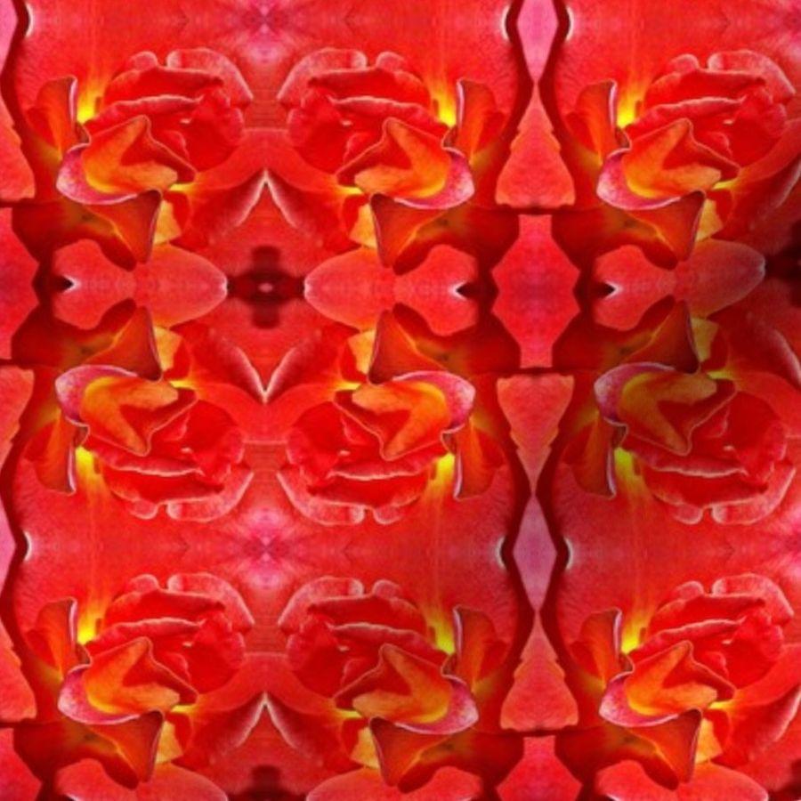 Fabric by the Yard Grenada Rose