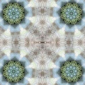 Froggy_Circle